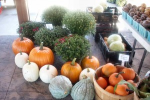 Gloversville Farmer's Market